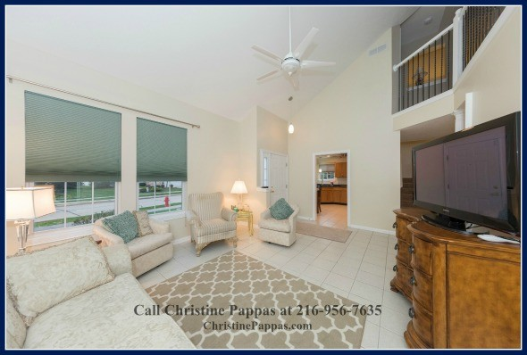 Hang out with the family in the light and airy living room of this condo for sale in Northeast OH.