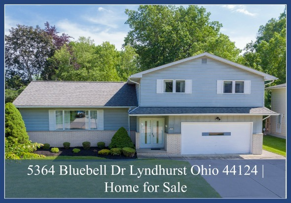 Lyndhurst OH Real Estate Properties for Sale